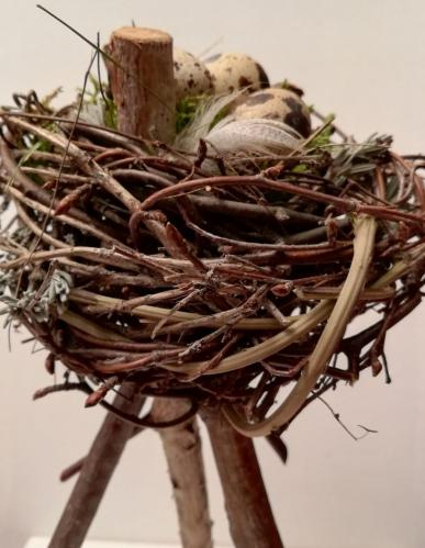 Le nid sur trepied